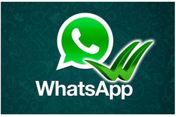 WhatsApp: doppie spunte anche per le chat di Gruppo