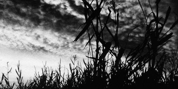 """""""American Horror Story – Hotel"""": quattro teorie sulla nuova stagione"""