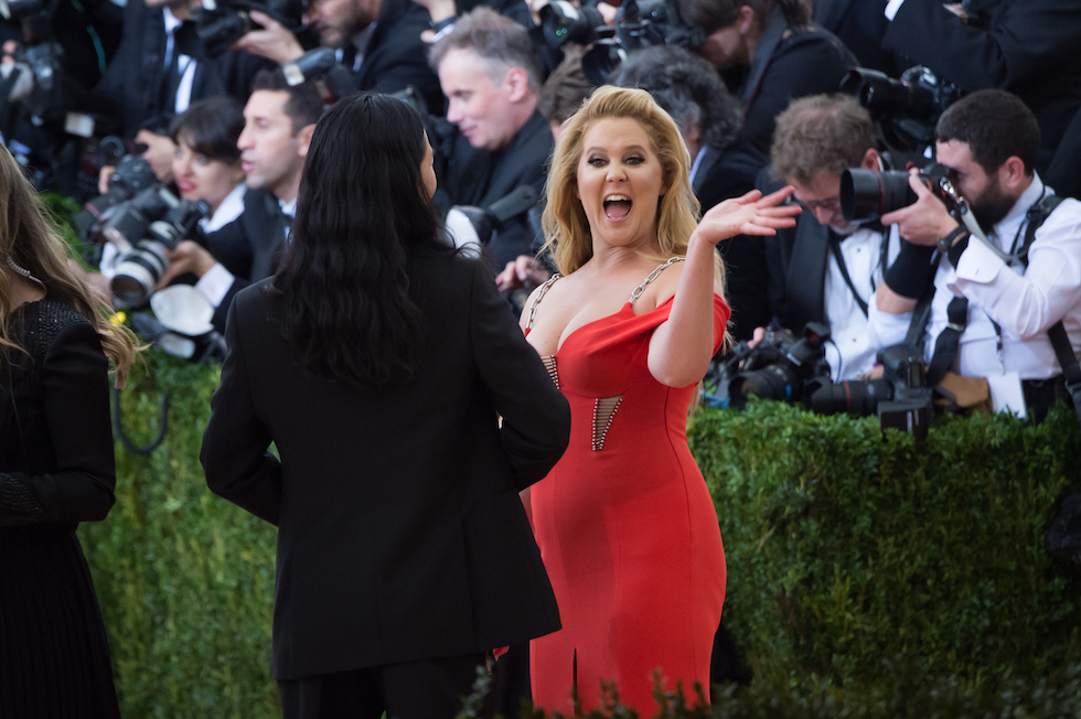 Amy Schumer  (Mark Sagliocco/Getty Images)