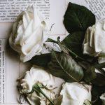 Non ti arrendere: la bellissima poesia di Mario Benedetti